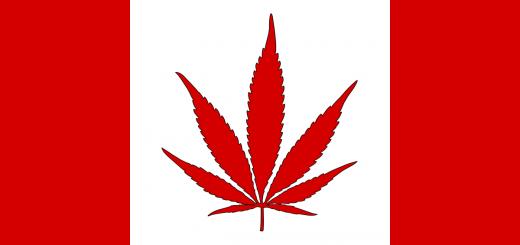 Buy Weed in Toronto